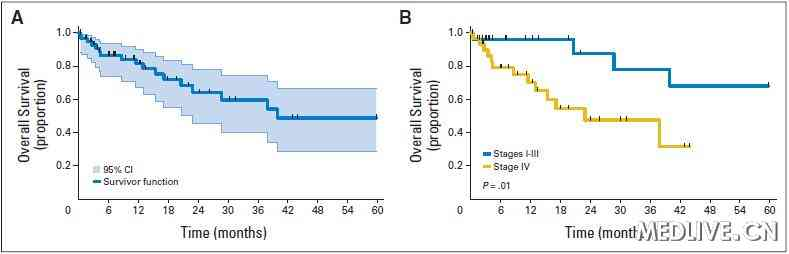 HER-2突变的肺癌患者的生存曲线